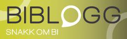 BI blogg BI Data Automation NextBridge Norway